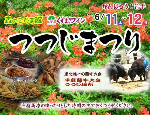 【6/11(土)~12(日)】 つつじまつり開催 【頑張ろう岩手!】