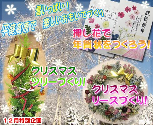 森のこだま館 冬休み企画