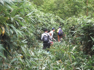 森のこだま館 草刈ボランティア