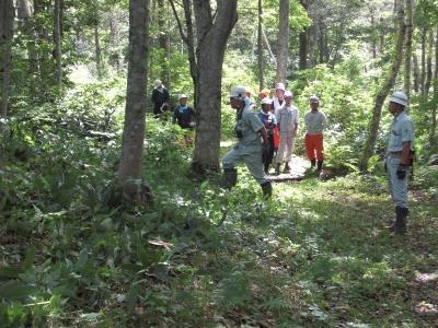 森のこだま館 四季 森林整備
