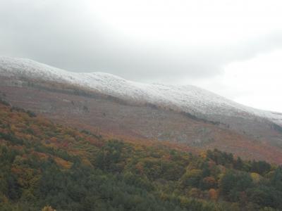森のこだま館 四季 初冠雪