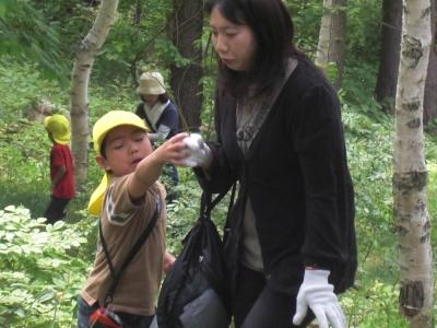 森のこだま館 葛巻保育園 ワラビ取り体験