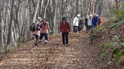 森のこだま館 四季 晩秋