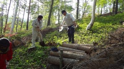 森のこだま館 四季 つつじ